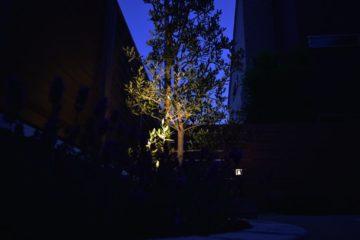 植物いっぱいのバーベキュースペース