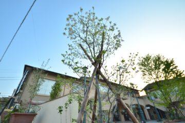 アロマガーデン植栽工事
