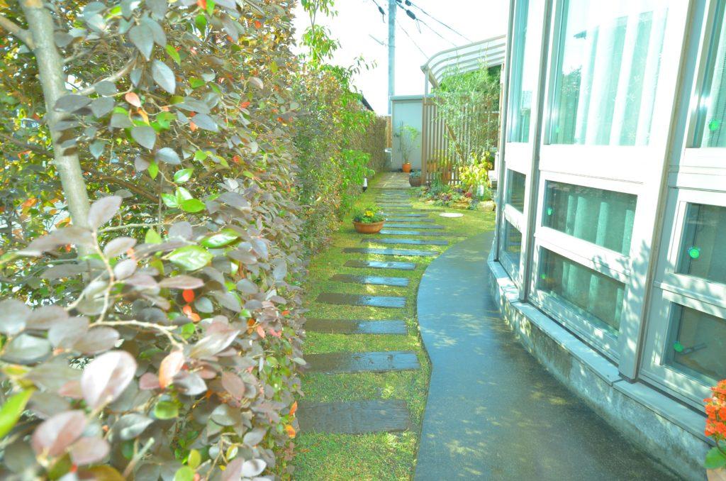 植物を楽しめるリノベーションガーデン