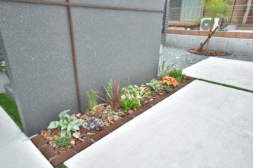 植物を楽しめるお庭🌻